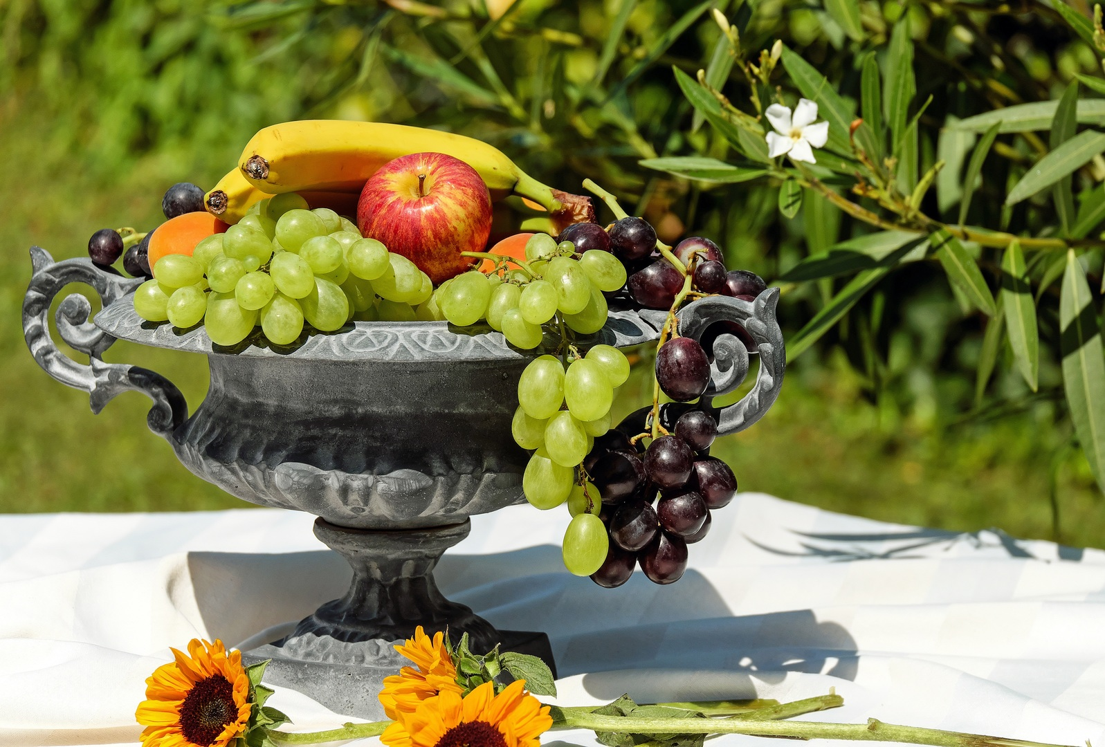 Grapes are a non-climacterictype of fruit